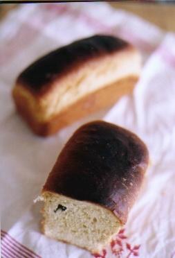 地粉のパン