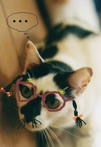 Cat_0606_252_1